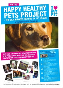 Happy Healthy Pets Project poster