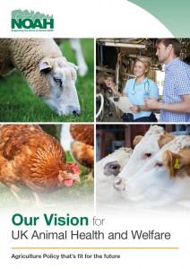 NOAH Vision Paper cover